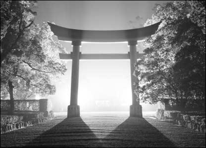 Bw torii