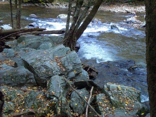 River bank 2