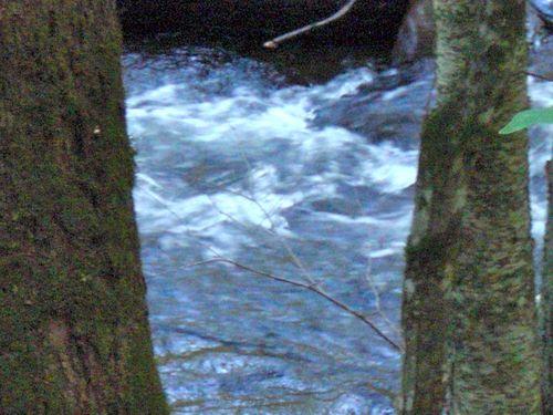 White water 2