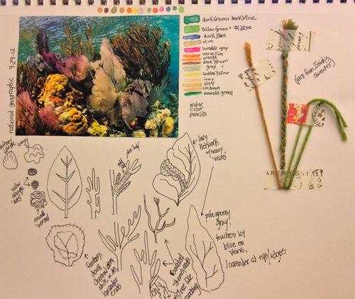 Reef study 2
