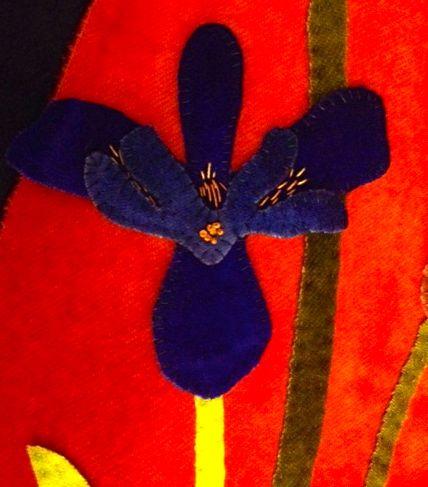 Blackbird iris