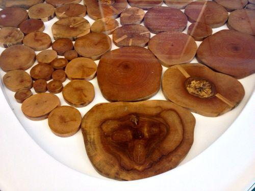Wood rose 2