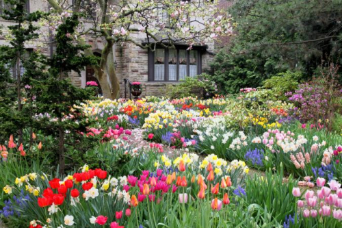 203062-675x450-spring-garden