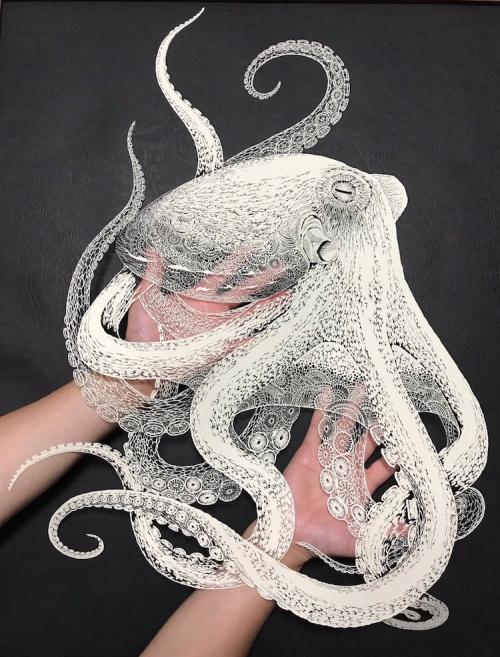 Kirie-paper-cutting-art-octopus-masayo-fukuda-2