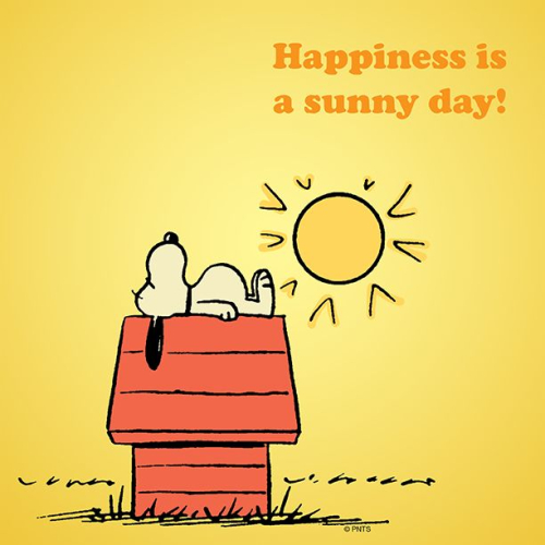 Sunny-day-quotes