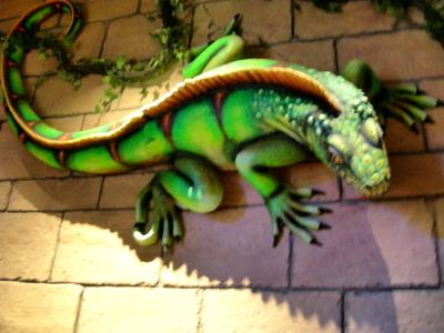 6ft_iguana