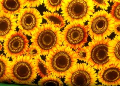 Sunflowersjpg